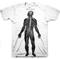 Image of VINTAGE ANATOMY tee shirt