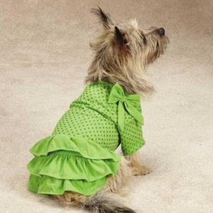 Image of Zack & Zoey Polka Dot Ruffle Dog Dress - Parrot Green