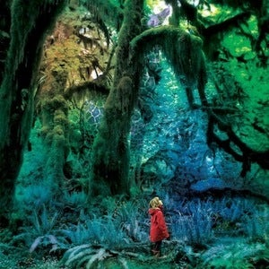 Image of JACCO GARDNER | CABINET OF CURIOSITIES LP