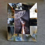 Image of horn 4x6 frame