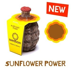 Image of Kabloom - Seedbom (Sunflower & Cornflower Seedbombs)