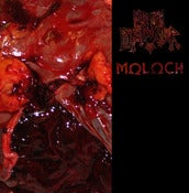 Image of Moloch / Meth Drinker split LP
