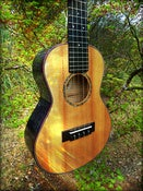 Image of Sailor Spruce/Smokey Maple Custom Tenor