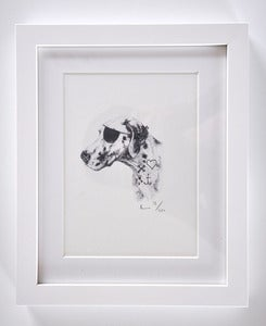 Image of FRAMED PIRATE DOG PRINT A5.