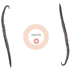 Image of vanilla extract kit