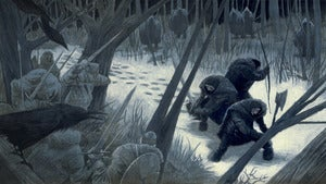 Image of Ambush