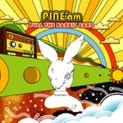 "Image of PINE*am - ""Pull The Rabbit Ears"" CD"