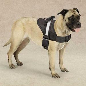 Image of Guardian Gear Excursion Dog Harness