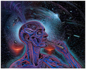Image of Bicycle Day print by Alex Grey and Mars-1