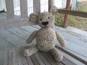Image of The Teddy Bear That Saved Me