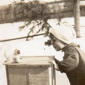 Image of BOY & TOY CAMERA TAKES PHOTO OF TOY DOG REAL PHOTO POSTCARD RPPC