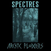 Image of Arctic Flowers / Spectres split 7&quot;