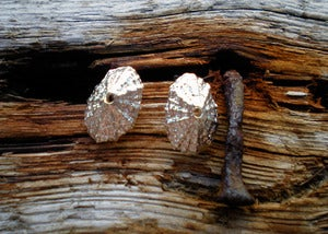 Image of Small Limpet Post Earrings