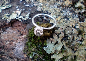 Image of Small Acorn Ring
