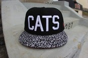 Image of cats hat cement visor