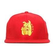 Image of SSUR - MARINES SNAPBACK