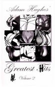 Image of Greatest Hits Volume 2 by Adam Hughes