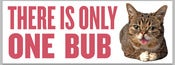 Image of THERE IS ONLY ONE BUB - bubmper sticker!