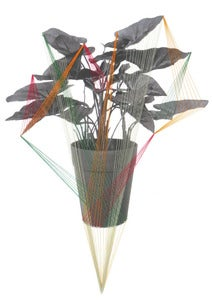 "Image of Print of an Original hand threaded art work:""Room plant-contact"""