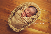 Image of Little Peanut Jute Pod