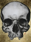 Image of gold skull print