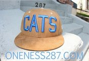 Image of khaki suede blue cats hat