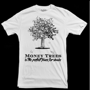 Image of money tree