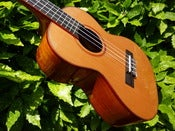 Image of Kala KA-ATP-CT Solid Cedar/Acacia back and sides Tenor