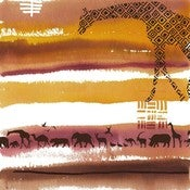 Image of Safari Study Three