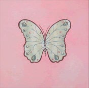 "Image of Royal Butterfly on Pink 12"" x 12"""