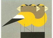 Image of Charley Harper <br> Gregarious Grosbeaks