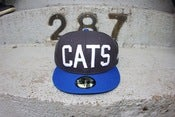 Image of GRAPHITE grey CATS FITED HAT