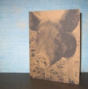 Image of Barnyard Animals - Set of 3 note cards