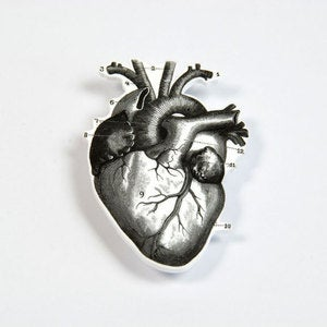 Image of BROOCH - the heart: be still my...