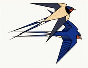 Image of Clifford Richards<br>Swallows