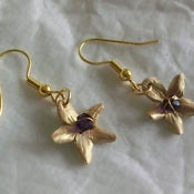Image of rose crystal earrings