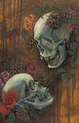 Image of Skulls & Pinecones