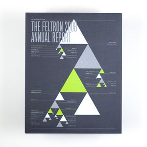 Image of Feltron 2008 Annual Report