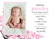 Image of Little Blossom Birth Announcement