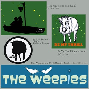 Image of The Weepies Decals