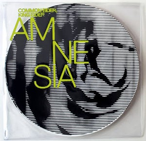 Image of Common Eider, King Eider - Amnesia 12""
