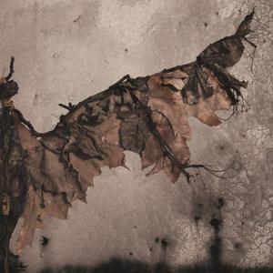 "Image of Luasa Raelon ""Vampyr: Light Of The Beast"" CD"