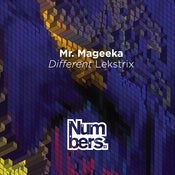 Image of Mr Mageeka – Different Lekstrix