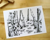 Image of Winter Trees - A4 Print