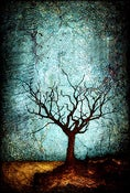 Image of Magnet - Horizon Series - Dormant Tree 2