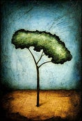Image of Magnet - Horizon Series - Peace Tree 2