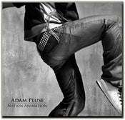 "Image of Adam Pluse ""Nation Animation"" Album"