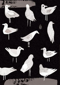 Image of Seagulls