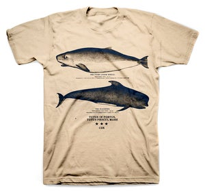 Image of THE WHALE PORT shirt