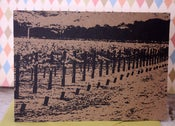 Image of Napa Valley Vineyard note cards